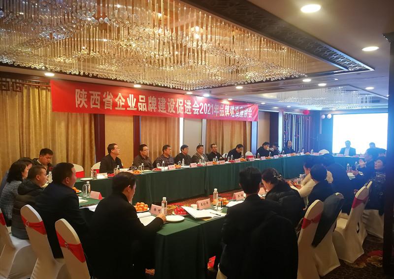 2021年陕西省企业品牌建设座谈会在西安成功举办(图2)